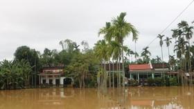 Ngày 10-12 học sinh toàn tỉnh Quảng Nam được nghỉ học