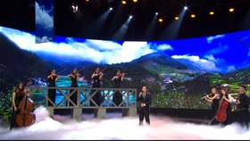 Television concert marks Vietnam's War Invalids and Martyrs' Day