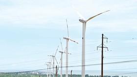 Soc Trang attracts clean energy investors