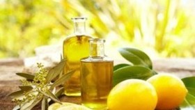 Cajeput (Tram) oil is good for relieving cough, sore throat, burns and aches. It can be used on sensitive skin and infants (Photo: tinhdautramhue.com)