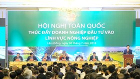 At the conference (Source: baochinhphu.vn)