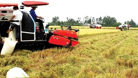 Vinafood 2 to export 2 million tons of rice to Philippines