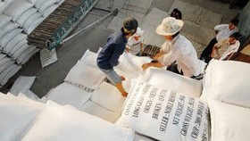 Rice bags for exports (Source: cafef.vn)