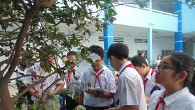 TPHCM thống nhất đề xuất miễn học phí cho học sinh bậc THCS