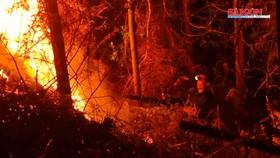 Khống chế đám cháy rừng trong đêm ở Hà Tĩnh