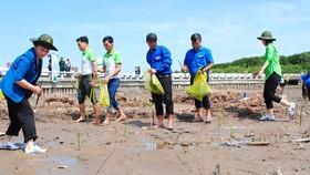 Quỹ 1 triệu cây xanh cho Việt Nam đến Đất Mũi