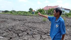 Cà Mau: Lỏng lẻo quản lý đất công, khó khăn xử lý hậu quả