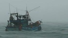 Sóng to gió lớn, cản trở cứu hộ tại Hòn Chuối, Cà Mau