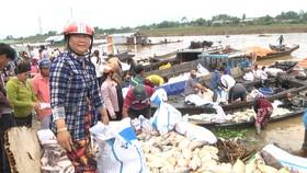 Cá bè trên sông La Ngà chết hàng loạt khiến nhiều gia đình nuôi cá điêu đứng