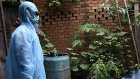 Một phụ nữ tử vong do bị sốt xuất huyết