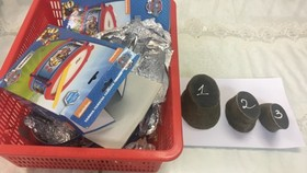 Pieces of rhino horns are seized at Tan Son Nhat Airport (Photo: SGGP)
