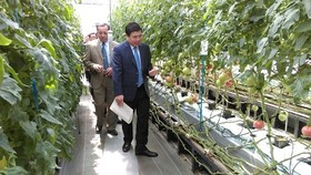 HCMC delegation visit Aichi province for agriculture study