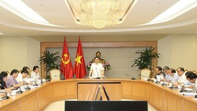 Deputy PM Hue presides the meeting (Photo: VGP)