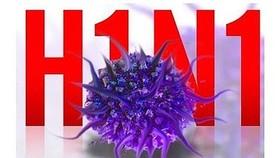 One man dies of A/H1N1 in Ca Mau Province