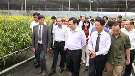Deputy PM Hue visits a flower cooperative in Lam Dong (Photo: SGGP)