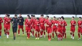 The national men's football team (Source: VNA)