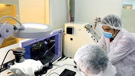 Research on new products in USM Healthcare Company, specializing in exporting medical equipment, with 100 percent domestic investment capital. Photo by Tan Ba