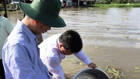 Breeding shrimp, fish released into river to protect living aquatic resources