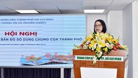 Deputy Director of the HCMC Department of Information and Communications Vo Thi Trung Trinh delivered her speech in the meeting. (Photo: Thanhuytphcm)