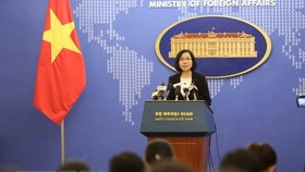 Ministry of Foreign Affair's Vice Spokesperson Nguyen Phuong Tra (Source: VNA)