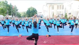 A mass yoga performance at the 2018 International Day of Yoga in Tien Giang province (Photo: VNA)