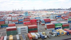 """Bộ NN-PTNT tháo gỡ hàng chục container thủy sản nhập khẩu """"tắc"""" tại cảng"""