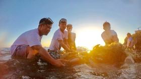 Lặn vớt rác dưới đáy biển Lý Sơn, tỉnh Quảng Ngãi