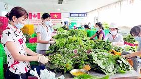 Điểm sơ chế rau của Hợp tác xã Phước An, huyện Bình Chánh, TPHCM