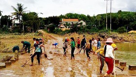 Nên khôi phục việc tổng vệ sinh ở nông thôn