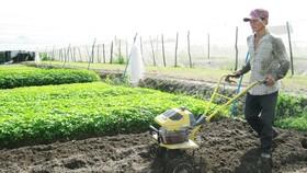 Để nông dân, người lao động tự do có lương hưu