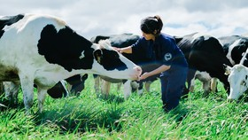 Việt Nam có hệ thống trang trại đầu tiên đạt chuẩn Global G.A.P.