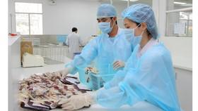 Ngân hàng máu đạt chuẩn GMP: Người bệnh hưởng lợi