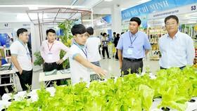 TPHCM xúc tiến các chương trình hàng Việt quy mô lớn