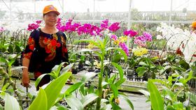 Chị Nguyễn Thị Huê tham quan học tập mô hình nông nghiệp hiệu quả tại Đồng Nai