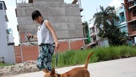 自9月15日起,寵物狗儘管有人牽引,若沒有戴嘴套的 話,飼主仍然被罰款。