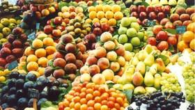 今年前8個月果蔬進口總額提升至10億2000萬美元,同比增近94%。(示意圖源:互聯網)