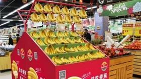 嘉萊黃英農業公司的香蕉出現在中國許多超市裡的水果攤上。(圖源:互聯網)