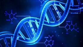 """新型""""鹼基編輯器""""助治療遺傳疾病。(示意圖源:互聯網)"""