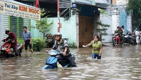 本市許多街道每逢下雨都出現水淹。
