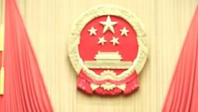中國國家主席習近平宣誓就職。(圖源:新華網)