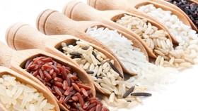 不同年齡和體質者選擇適合自己的米飯。(示意圖源:互聯網)