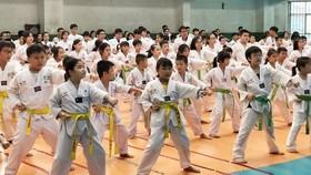 當天來自第五郡各跆拳道俱樂部的有逾250名越華學生參加比賽。