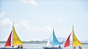 角逐頭頓Marina 盃的巴地-頭頓省2019年帆船公開賽於昨(17)日開幕。(圖源:越通社)