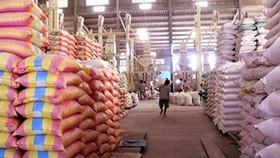 越南糧食協會:今年大米出口及經營生產情況將呈複雜多變及競爭劇烈情況。(示意圖源:互聯網)