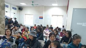 北寧省清康幼兒園的320多名學生於昨(15)日蜂擁來到河內以進行血液和糞便檢驗,尋找絛蟲抗體。(圖源:玉秀)