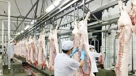 工業屠宰豬肉能確保肉品的新鮮和衛生安全。