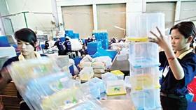 華人企業大同進公司生產塑料品出口。(圖源:互聯網)