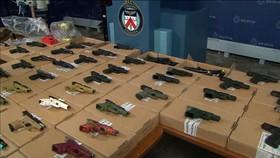 多倫多警方回購逾2700支槍械,創下新紀錄。 (圖源:互聯網)