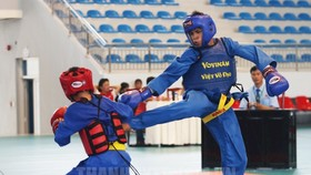 越武道比賽。(圖源:互聯網)