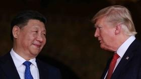 美國總統特朗普當地時間18日表示,中國國家主席習近平同意下星期在日本大阪舉行的G20峰會上與他會晤。圖為去年11月底特朗普與習近平在北京會面。(圖源:路透社)